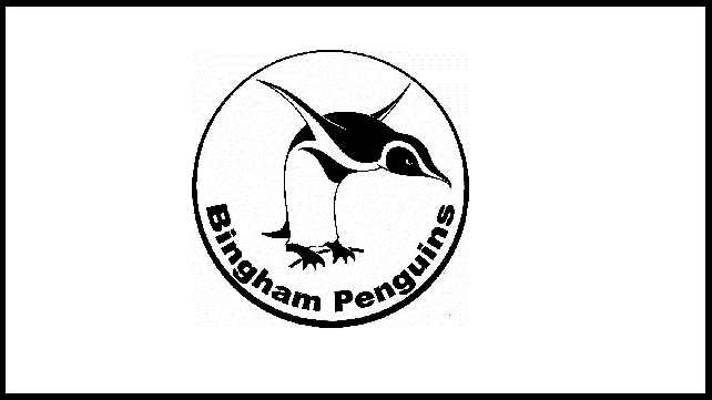Bingham Penguins – Recruiting Now!